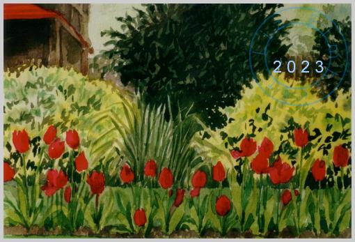 Tulips in Bishop's Park, Fulham