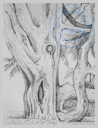 Cedar tree at Kew Gardens