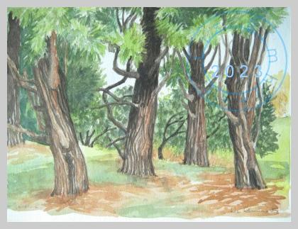 Pines, Kew